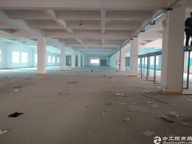 大岭山新出标准厂房二楼2500平方米出租