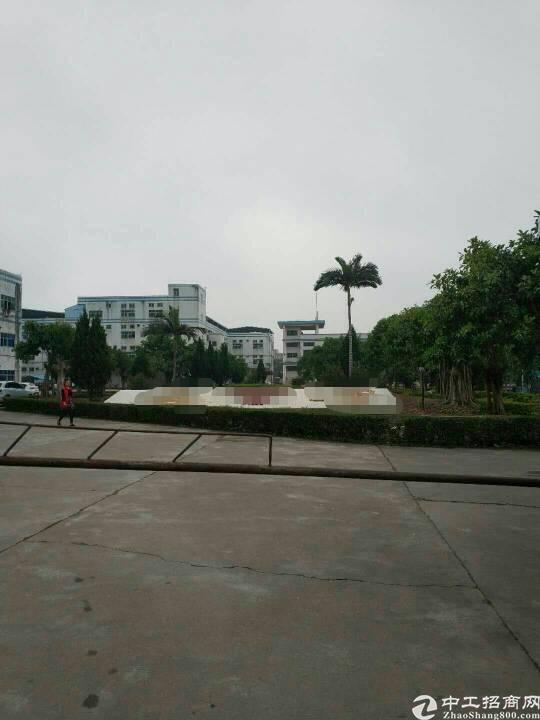 村委500平厂房出租,位于坪山新区坪山大道旁
