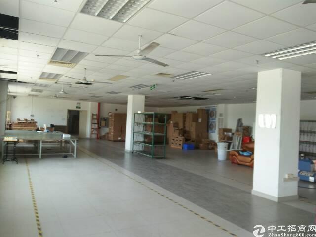 龙华新区观澜茜坑,新空出楼上600㎡装修齐全水电到位标准厂房