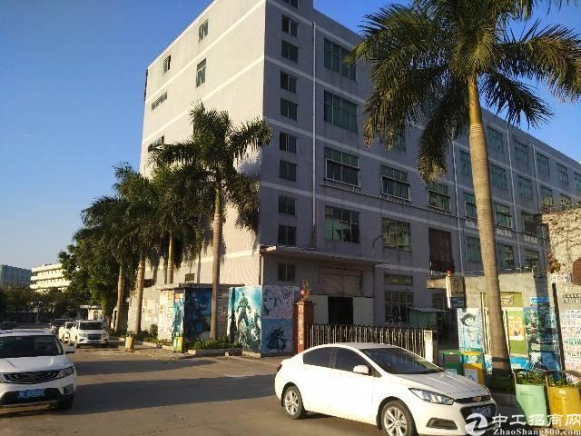 实业客转租一楼厂房500平,面积实在,层高5.8米