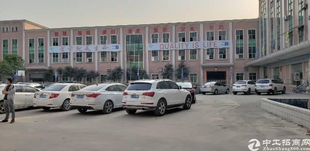 厚街繁华工业地段原房东1350方精品厂房出租仅10元
