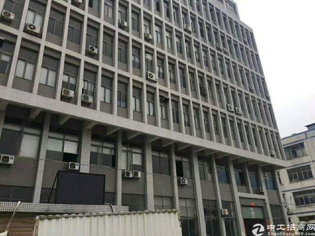 福永凤凰楼上1550无尘车间原房东红本厂房出租