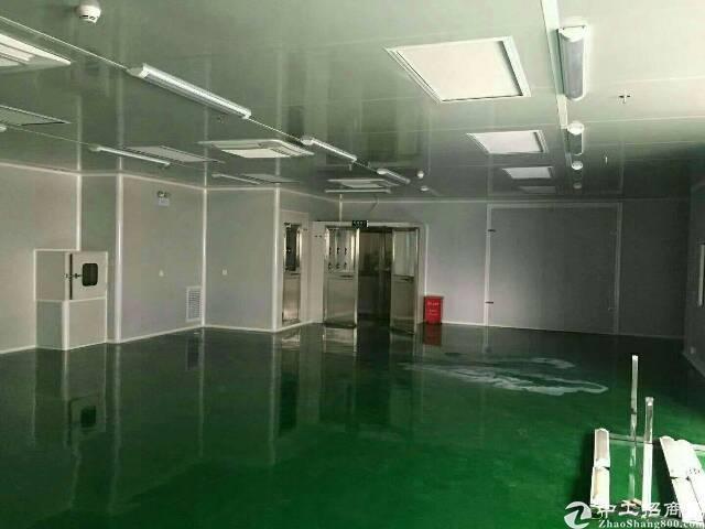 楼上原房东 厂房1200招租-图5