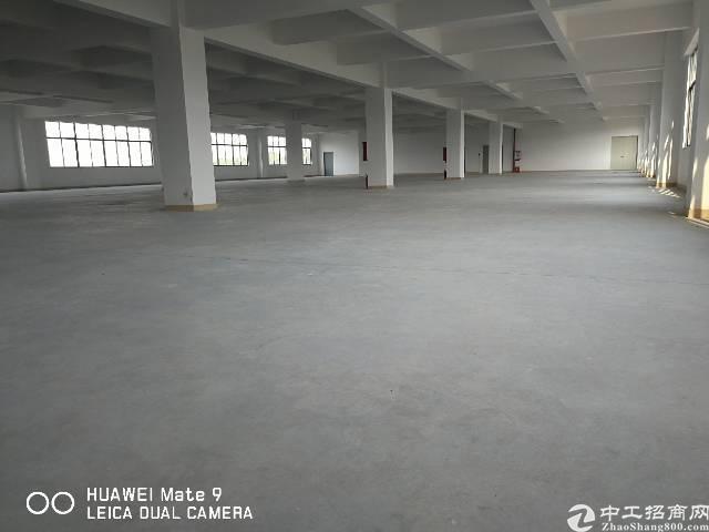万江新出楼房10块一平米1400平米一层