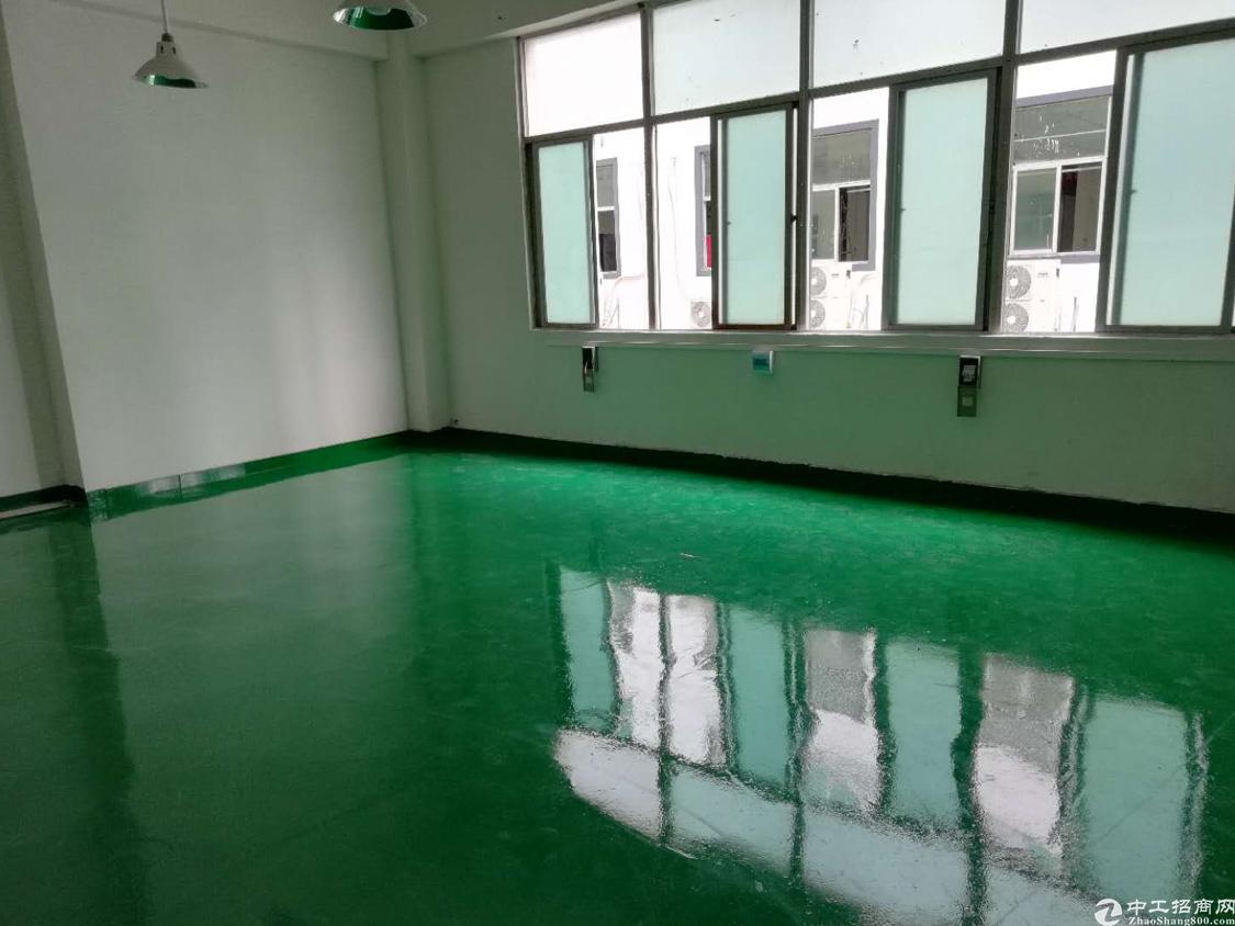 龙华大浪商业中心新出带装修厂房280平米!真正的拎包入住