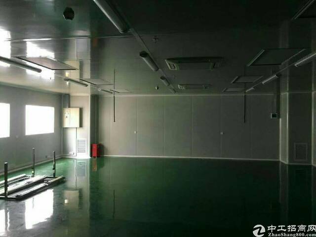 楼上原房东 厂房1200招租-图2