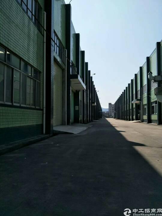 惠阳镇隆原房东豪华全新钢构厂房11000平出租