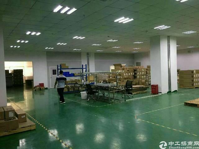 楼上原房东 厂房1200招租-图3