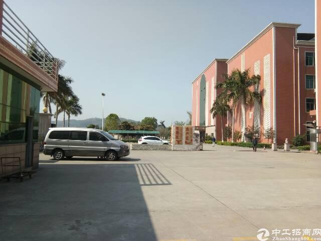 惠州市惠阳区新圩镇红本独院一楼仓库出租-图2