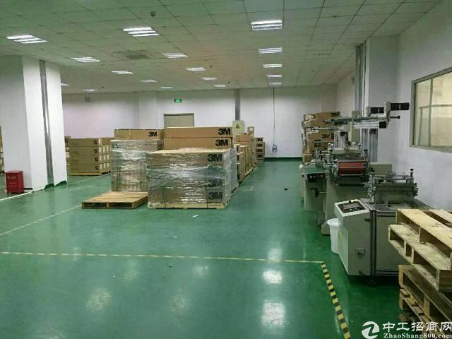 楼上原房东 厂房1200招租-图4