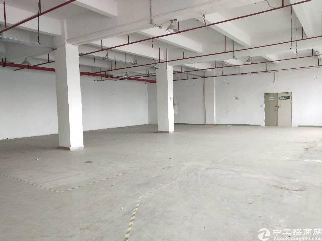 龙岗坪地高桥大工业园内1500平,有办公室有地坪漆-图3