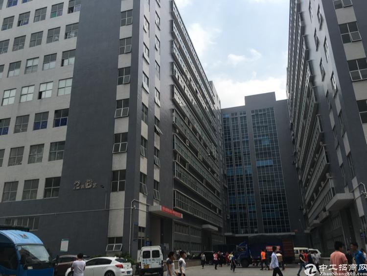 光明南光高速出口7楼9200平方带豪华装修厂房出租-图2