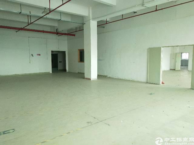 龙岗坪地高桥大工业园内1500平,有办公室有地坪漆