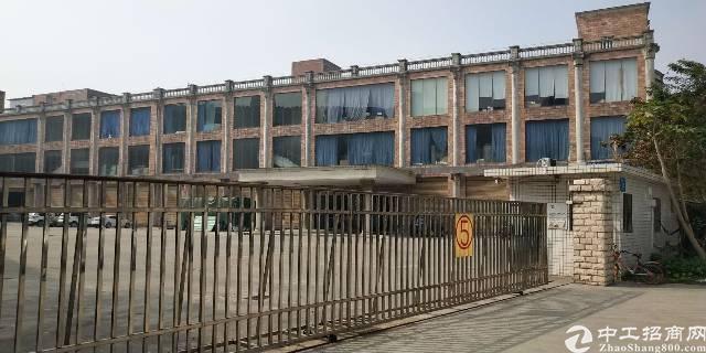 龙岗横岗红本独院实际面积10000平米出租(可分租)