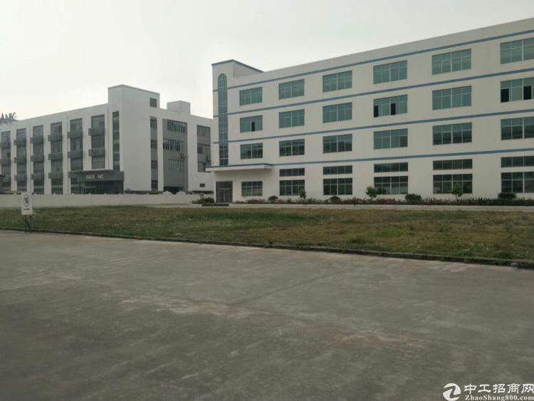 福永和平沿江高速旁新出500平精装修厂房园区形象好空地大好招