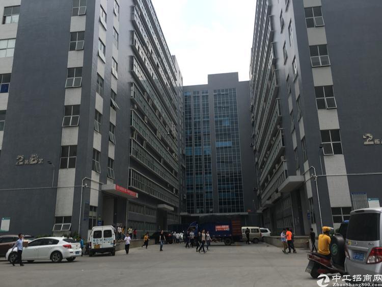 光明南光高速出口7楼9200平方带豪华装修厂房出租