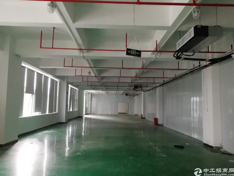 大浪福龙路出口优质厂房3楼2800平米,带装修-图2