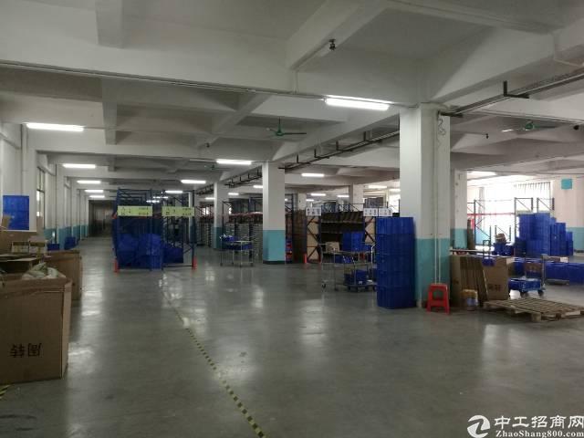 万江简沙洲港口大道旁厂房出租,2580平米,租金13块/平米