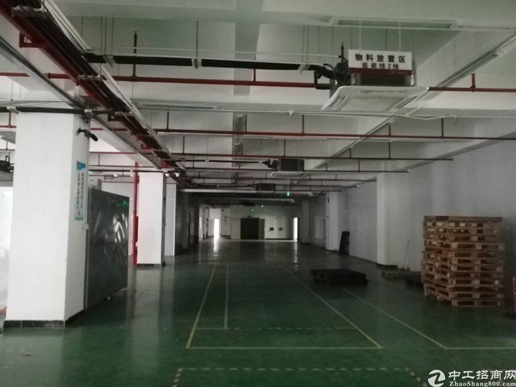 大浪福龙路出口优质厂房3楼2800平米,带装修-图4