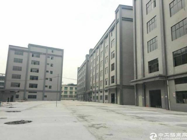 高埗镇工业区分租标准厂房1楼2500平带消防喷淋