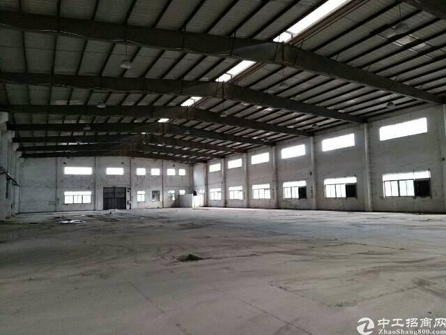 全新钢构1-3层10000平方可分租