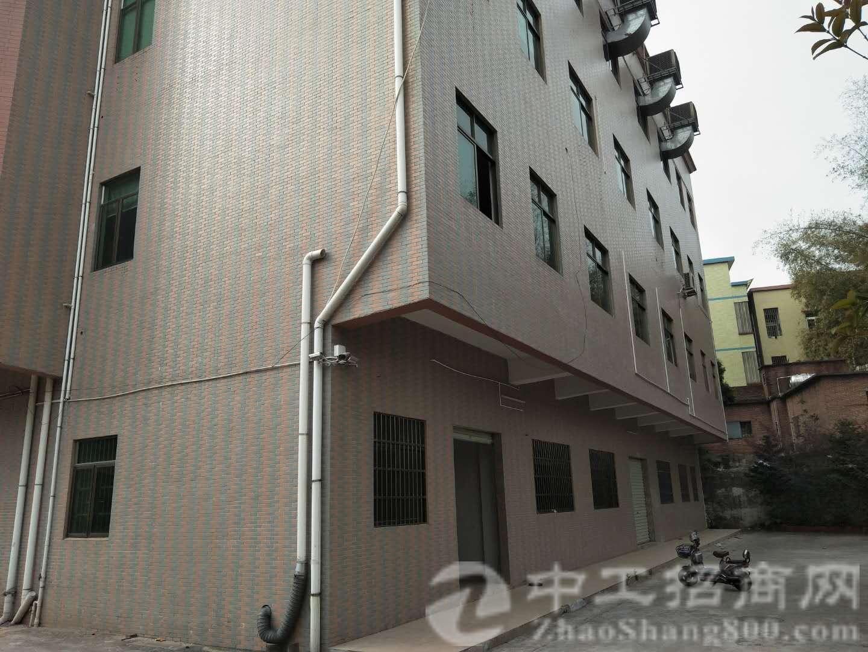 茶山镇工业区标准厂房三层5800平,可以分租!适合任何行业