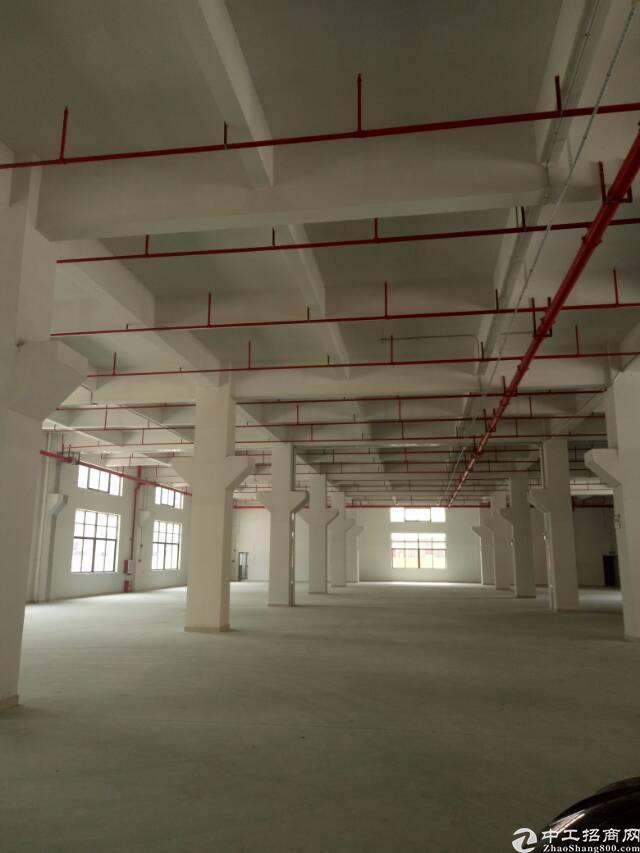 东坑新出厂房