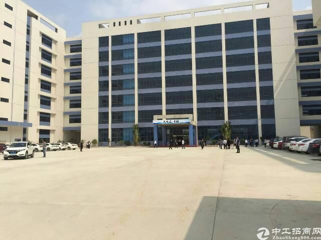 深圳智能制造科技产业园(双证齐全)概述: A栋1-