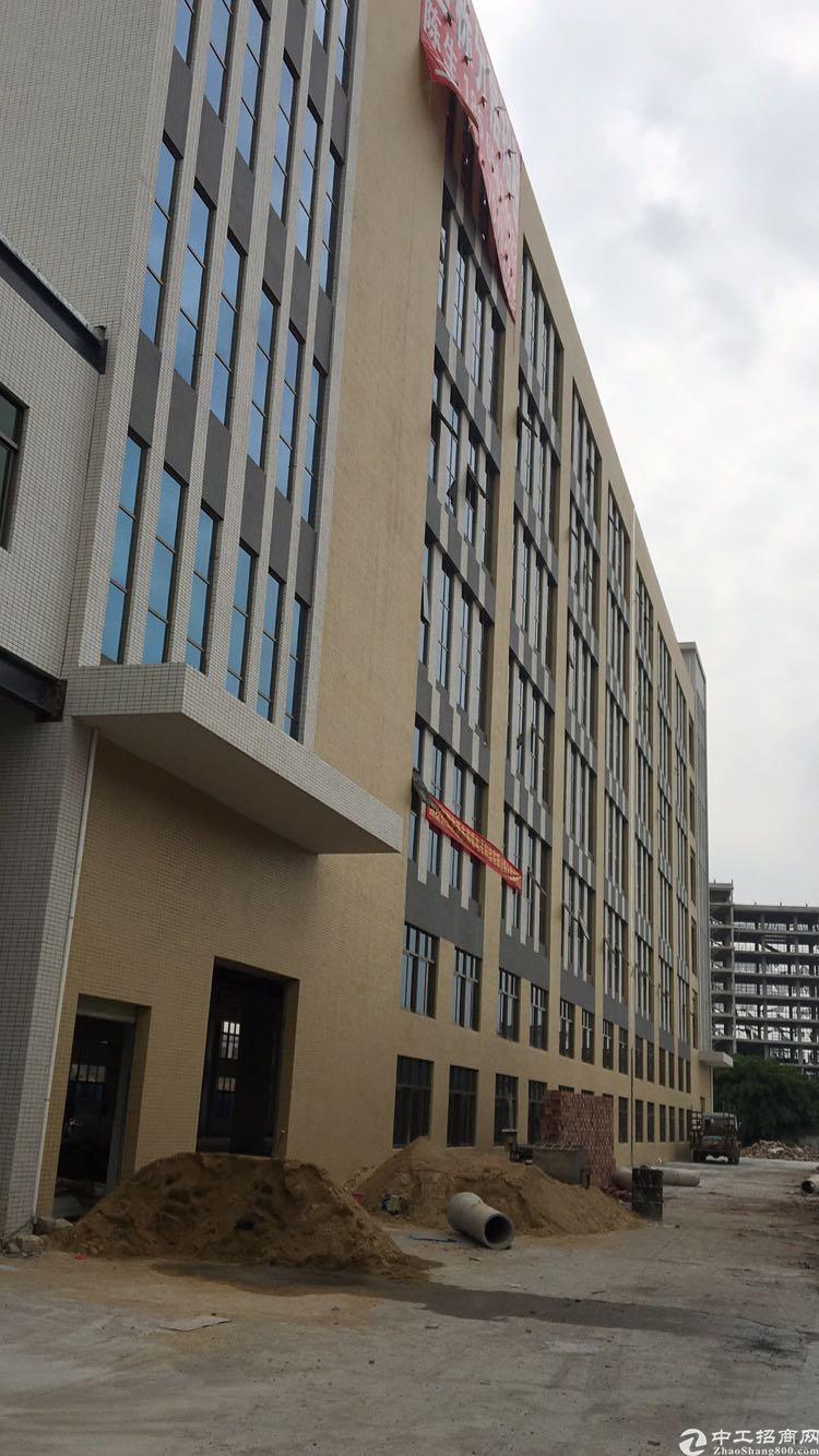 公明南光高速朗明出口楼上500平带前台办公室装修