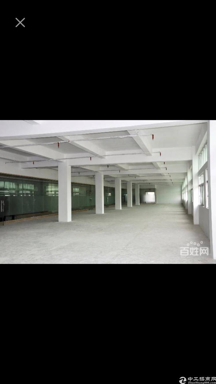 西乡新出2650平方厂房房东低价直租