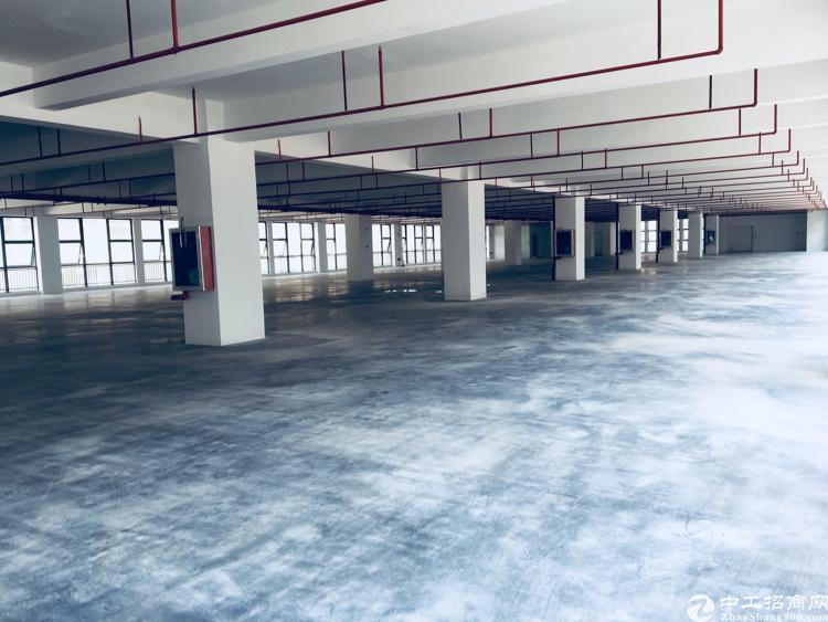 深圳大型工业园1500000平方可分租