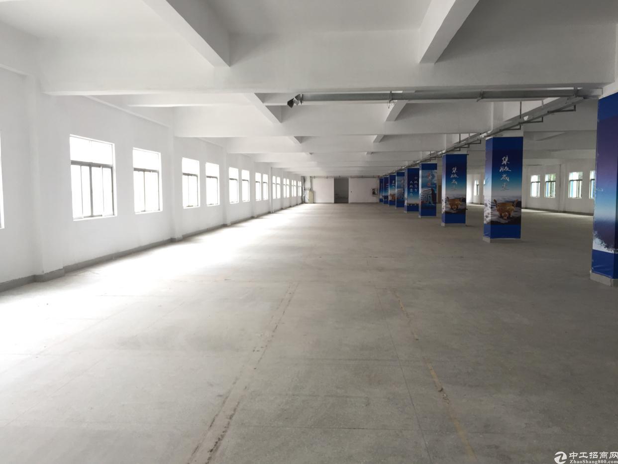 西乡铁岗创富工业区楼上2340平厂房出租-图4