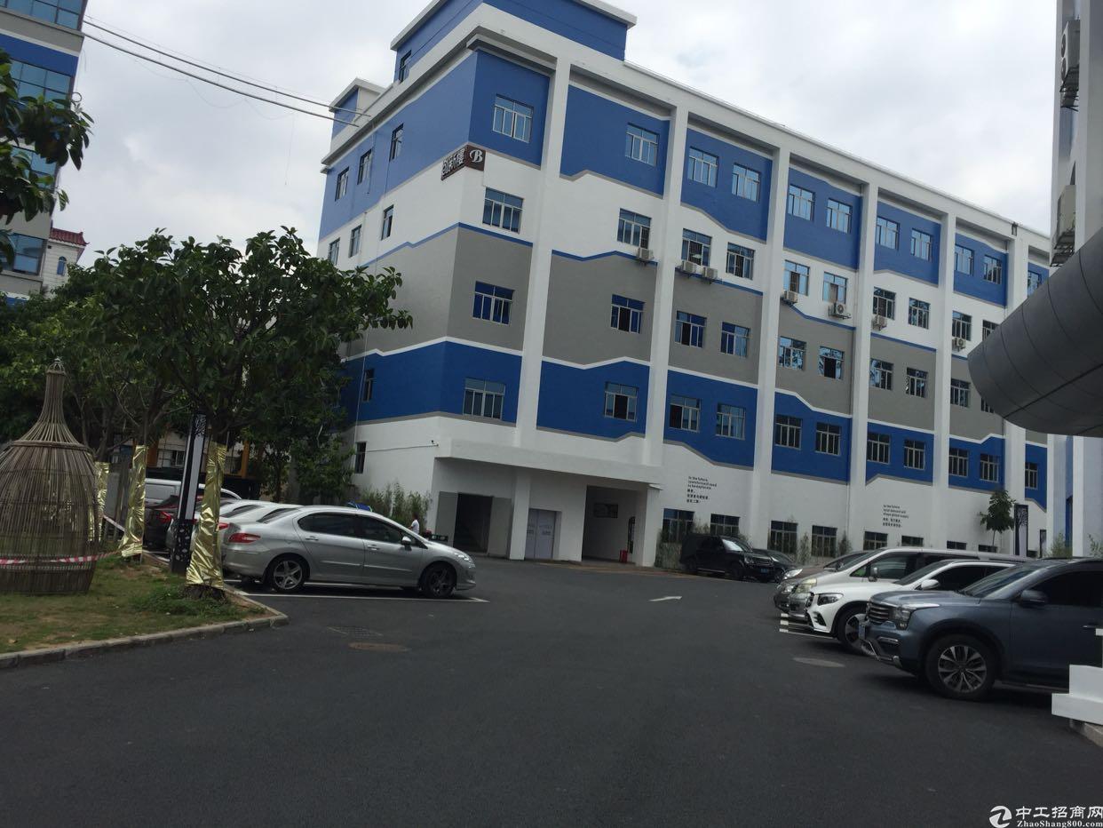 宝安中心孵化器产业园楼上2340平厂房出租