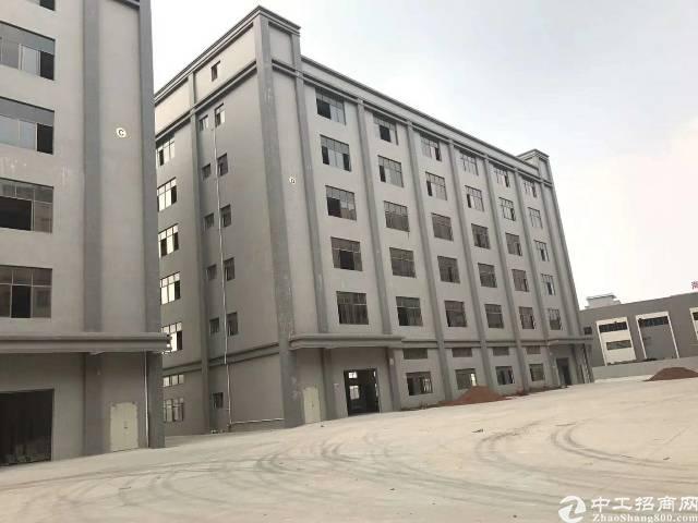 大朗镇全新工业厂房4栋总面积约50000平方大小可分租