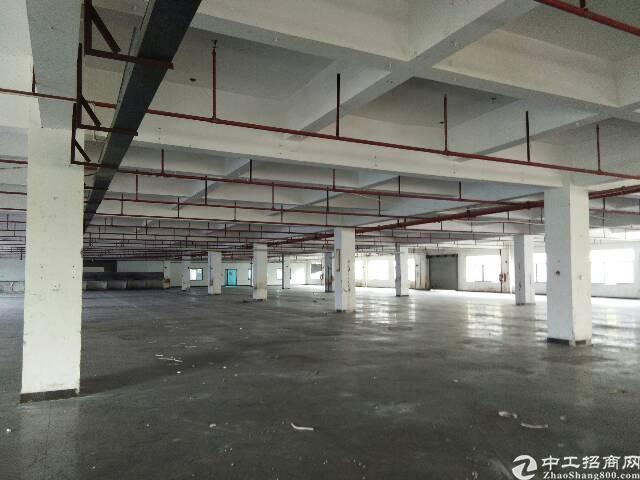 独栋标准厂房2楼4500平方