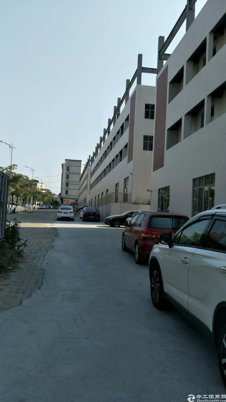 新塘镇独院厂房