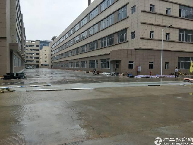 万江总站附近原房东标准独院