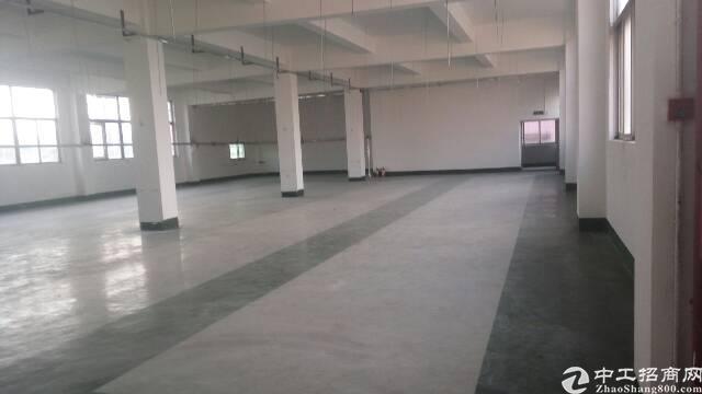 观澜福民新出楼上1100平方厂房出租