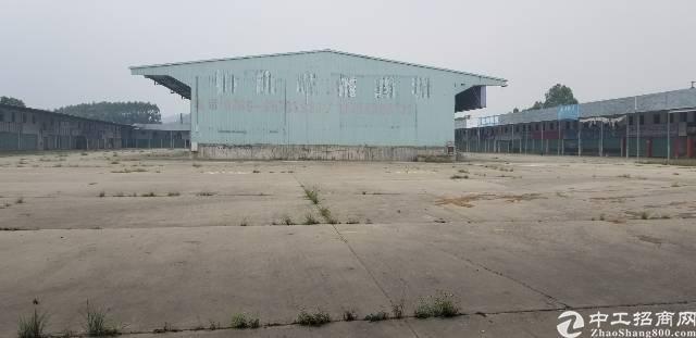 大岭山镇连马路边单一层厂房20000平方出租
