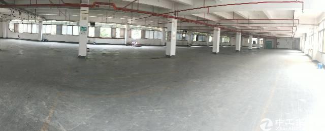 翻新改造12000平独院带喷淋厂房