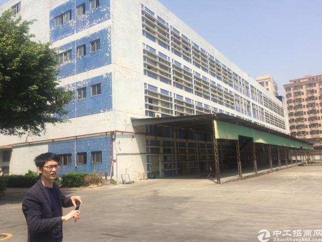 福永和平大型工业园50000平米厂房出租-图5