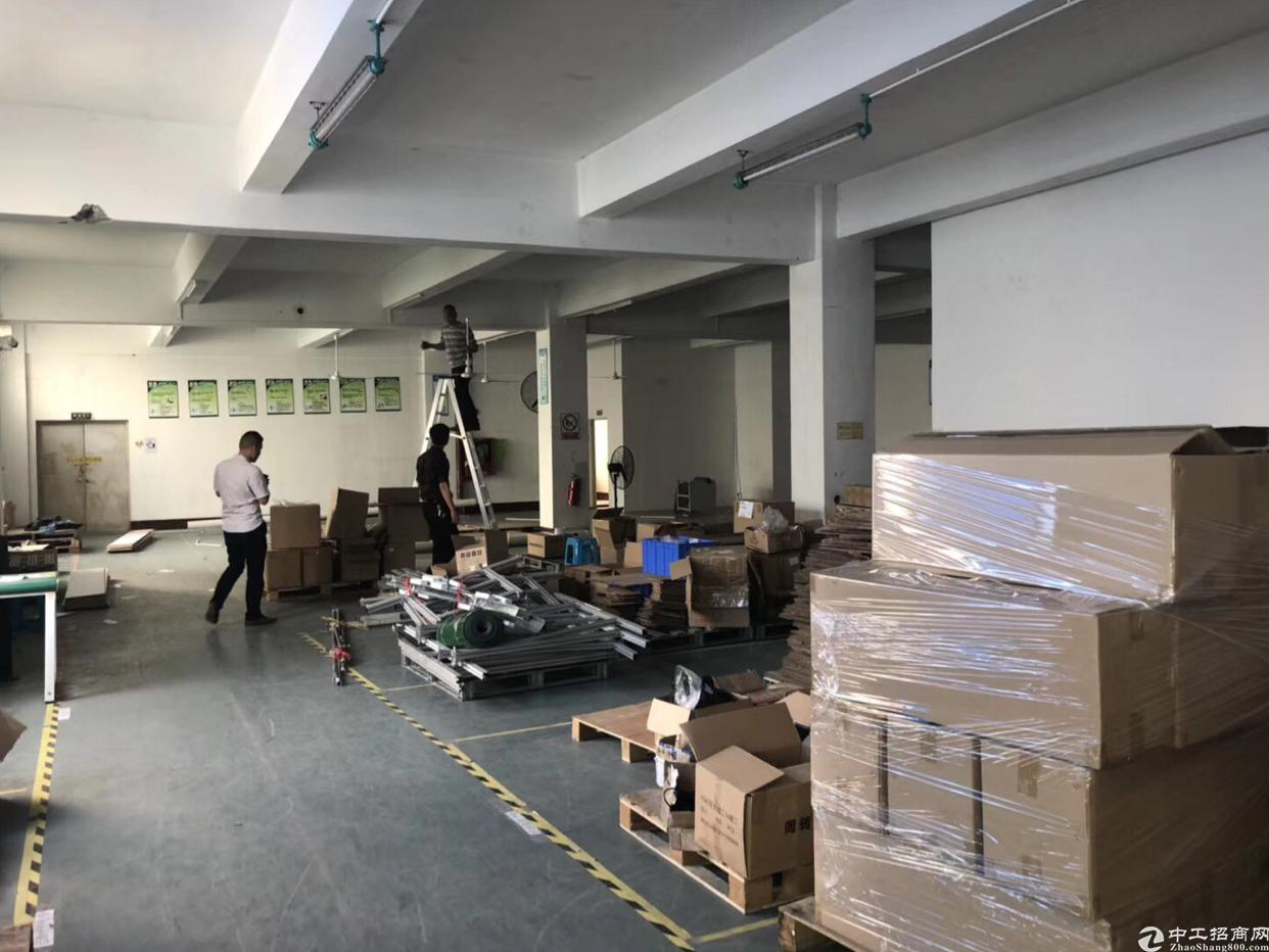 福永新和新出一楼1700平方招租 水电现成 可分租-图2