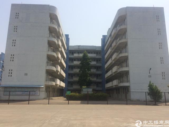 福永和平大型工业园50000平米厂房出租-图6