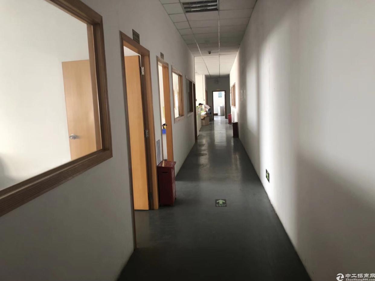福永新和新出一楼1700平方招租 水电现成 可分租