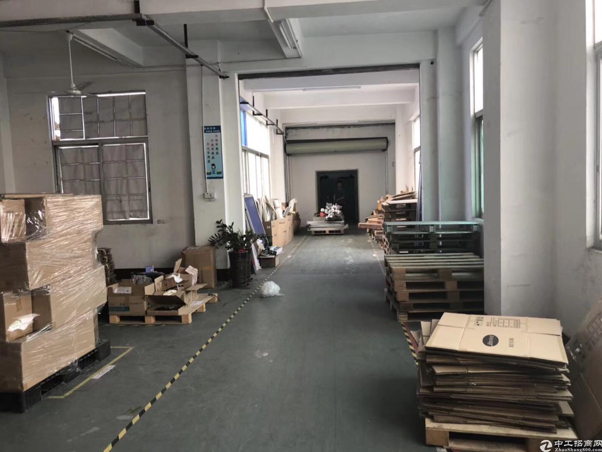 福永新和新出一楼1700平方招租 水电现成 可分租-图4