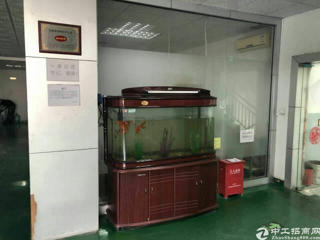 福永塘尾大型工业区1000平米带装修厂房急租-图2