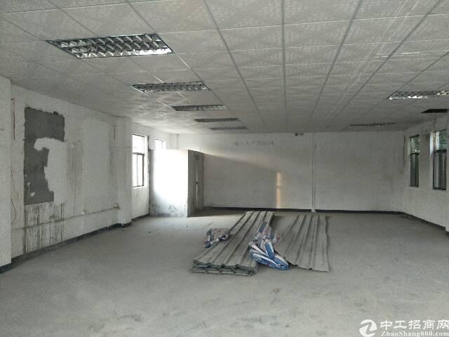 平湖凤凰大道旁独院出租