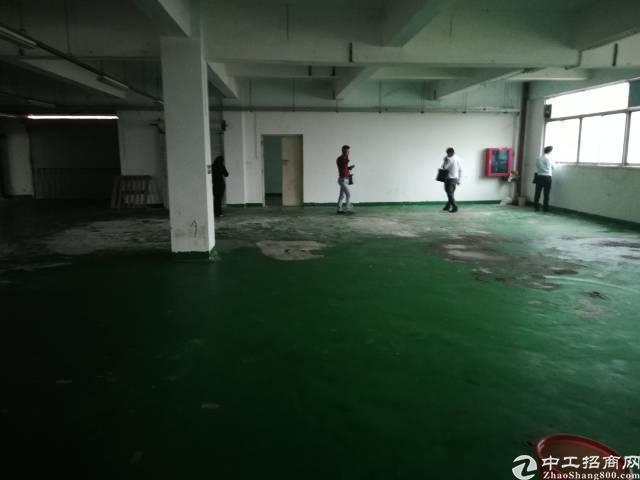 福永镇和平工业区楼上2000平方带装修厂房招租
