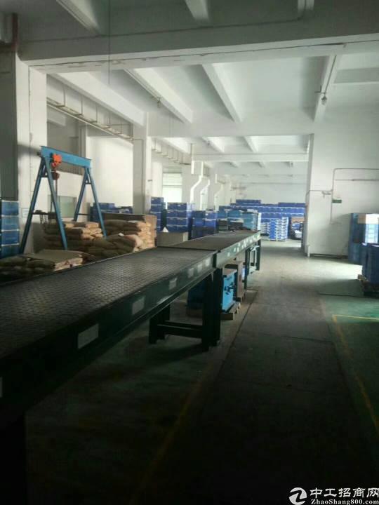 松岗107国道边花园式标准重工业厂房原模具注塑厂两栋厂房出租