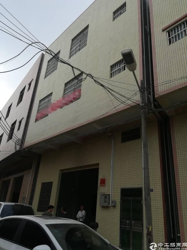 大岭山原房东独栋3层700平方厂房出租
